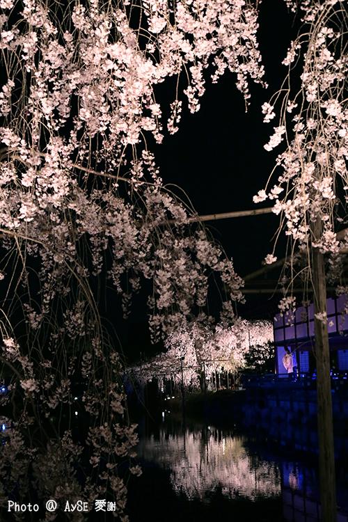平安神宮 東儀秀樹