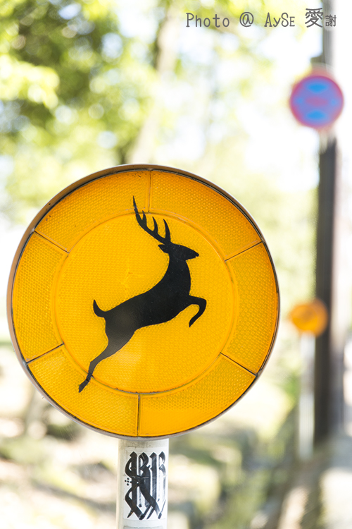 奈良 鹿注意