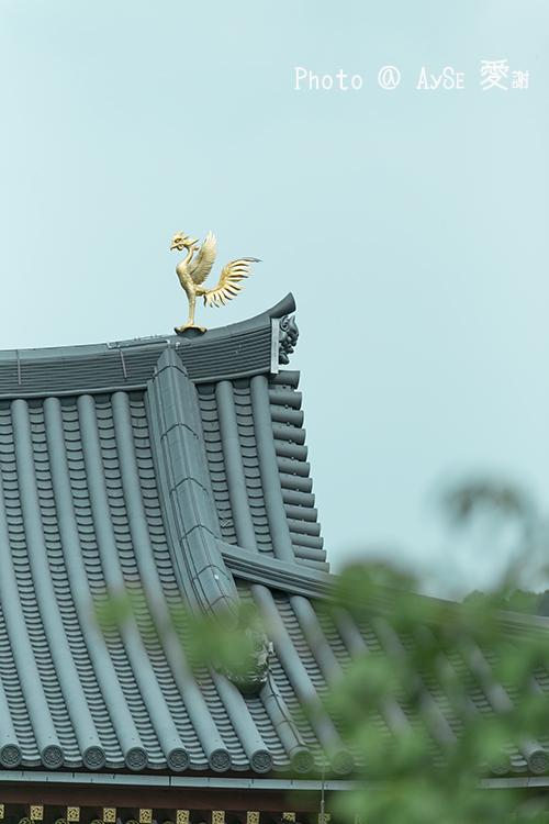 京都 平等院