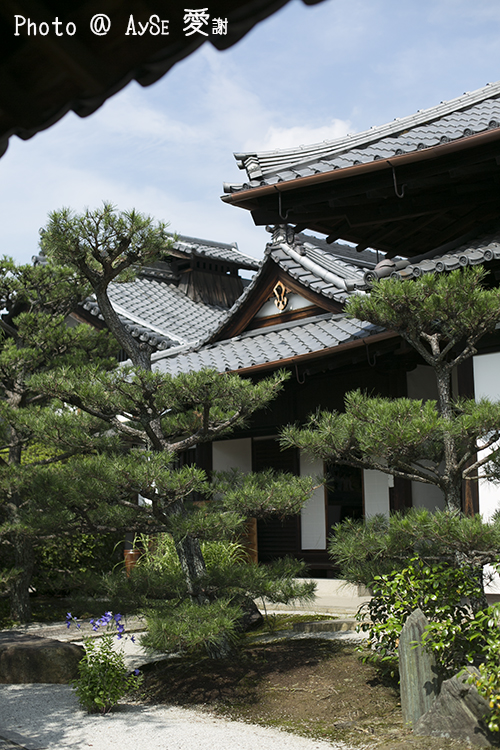 東福寺 光明院
