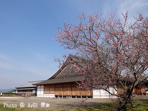 篠山城跡 大書院