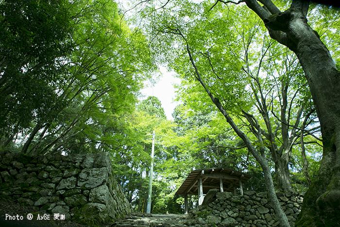 愛宕神社 参道