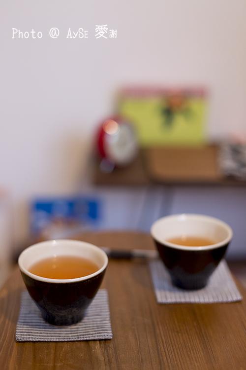 びわの葉温熱療法 FUJIRUSHI