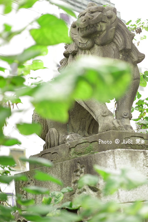 悪縁を切り良縁を結ぶ「安井金毘羅宮」