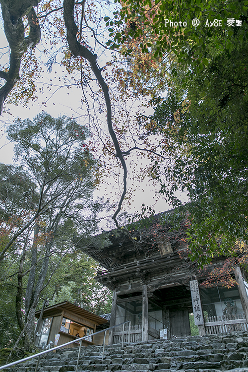 高雄山 神護寺