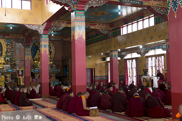 インド チベット寺院 India Bodhgaya