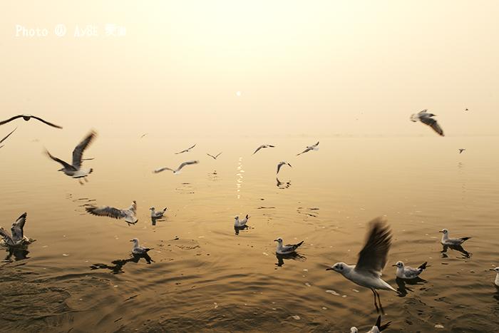 インド India ガンジス河 Ganges