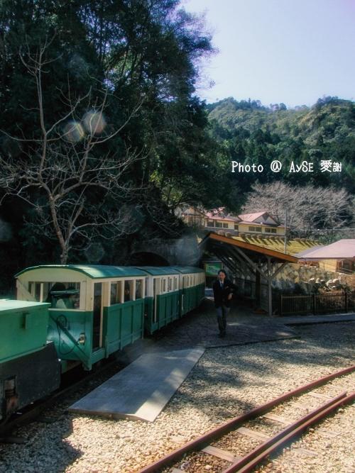 瀞流荘 トロッコ列車