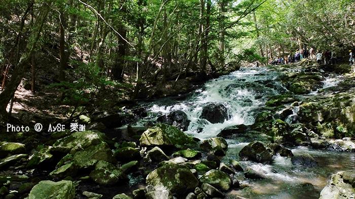 京都府立るり渓自然公園