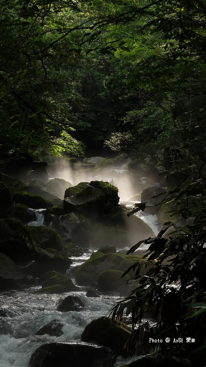 尾ノ島渓流