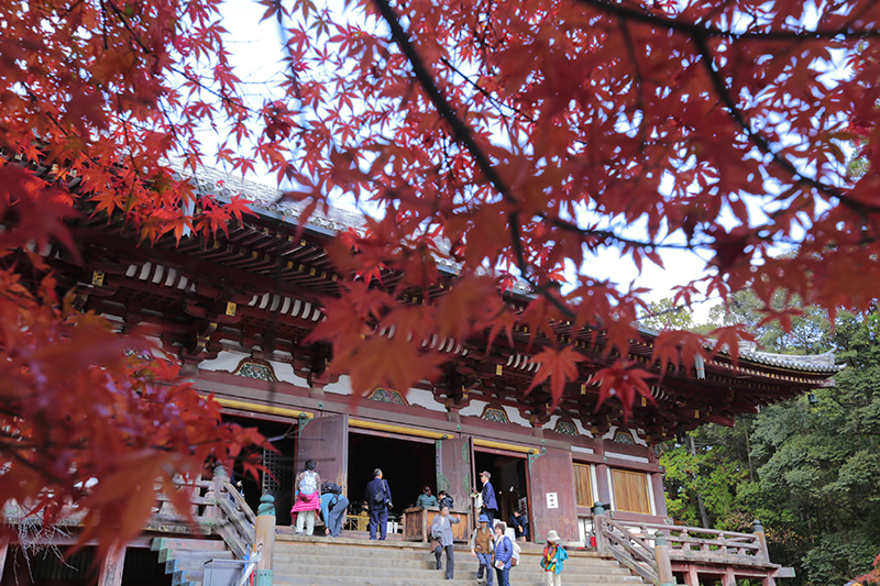 高雄 神護寺
